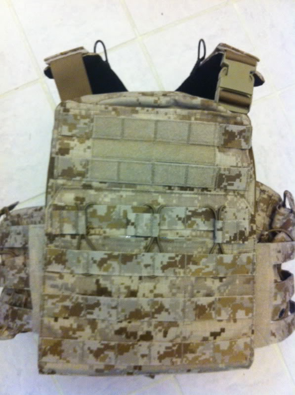 Crye CAGE Plate Carrier AOR1