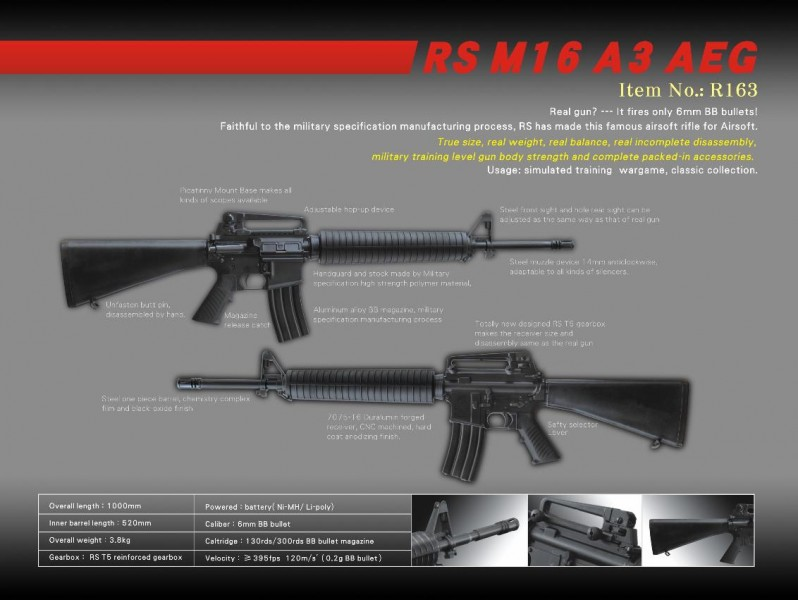 Real Sword M16 AEG