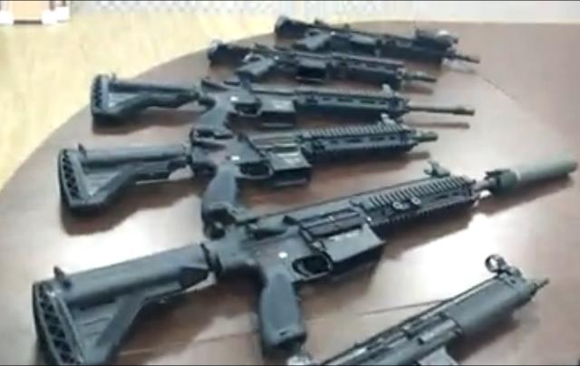 Vega Force Company HK417