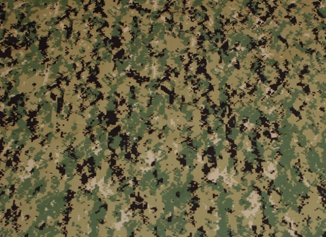 Crye Precision AOR2 camouflage