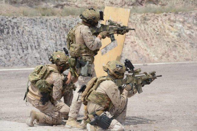 Armamento FGNE G36